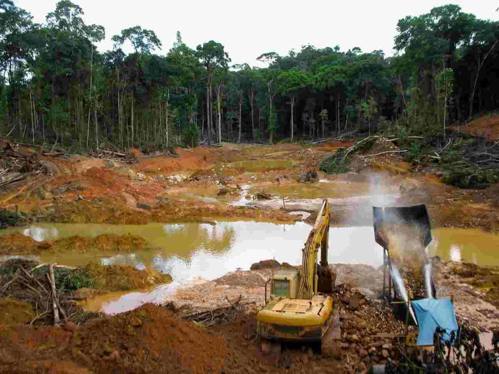 deforestacja Amazonii