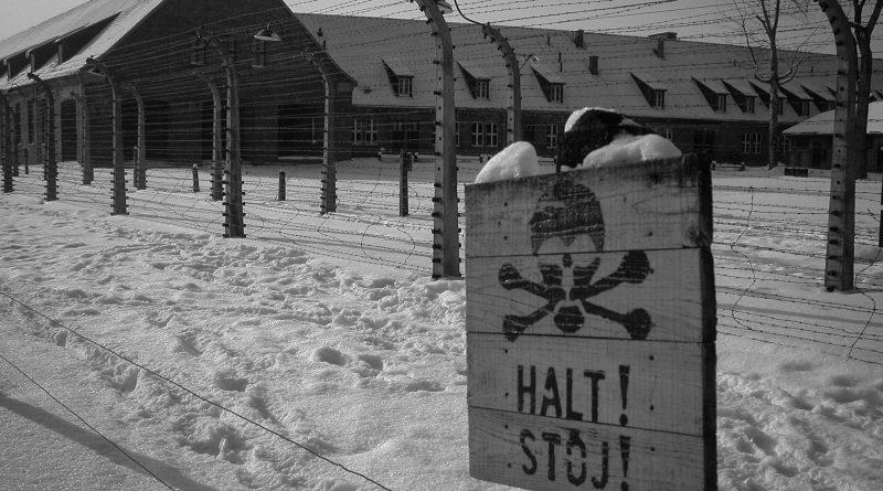 """,,Nigdy świat dorosłych nie objawił tak bardzo swojej bezduszności"""" – 76. rocznica wyzwolenia KL Auschwitz"""