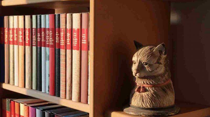 Niezwykła zwyczajność Murakamiego